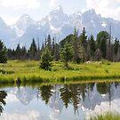 Grand Teton Beauty by Philip  Scribano