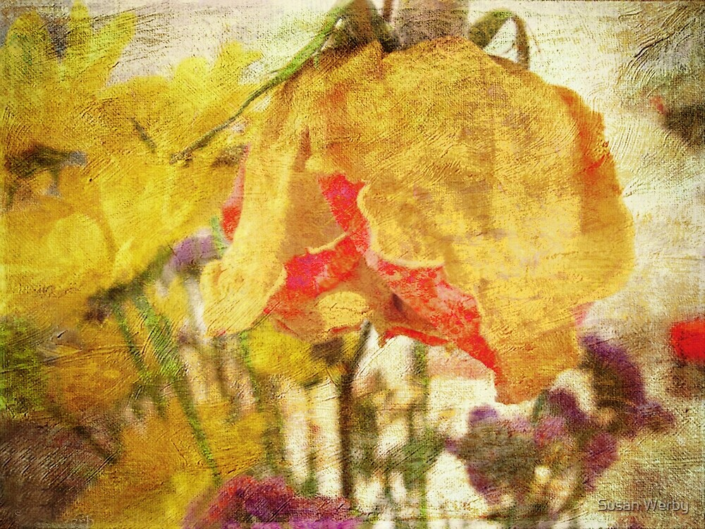 Floral Beauty by Susan Werby