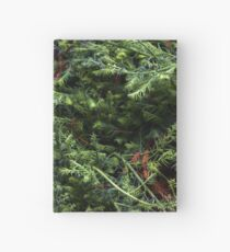 Guerneville Redwood Sprouts Hardcover Journal