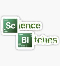Science Bitches Sticker