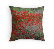 Beautiful Red Wild Anemone Flowers In A Spring Field  Throw Pillow