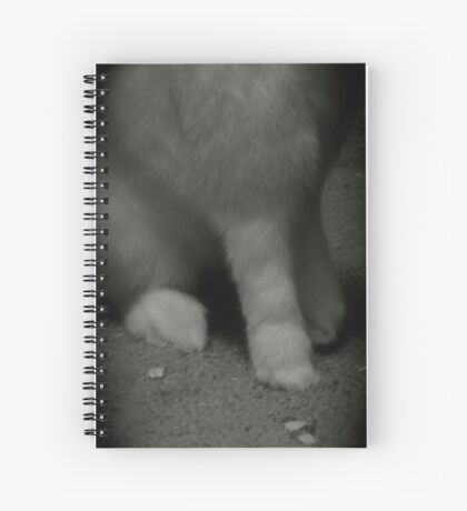 Lucky Rabbits Feet Spiral Notebook