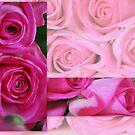 Lots Of Roses by Lozzar Flowers & Art