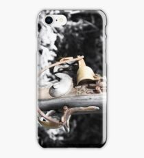 The Long Rifle  iPhone Case/Skin