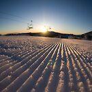 Mont Buller Winter Sunrise by Elena Martinello