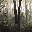 Pretty as a Picture By Lorraine McCarthy by Lozzar Landscape