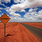 Floodway sign by Elena Martinello