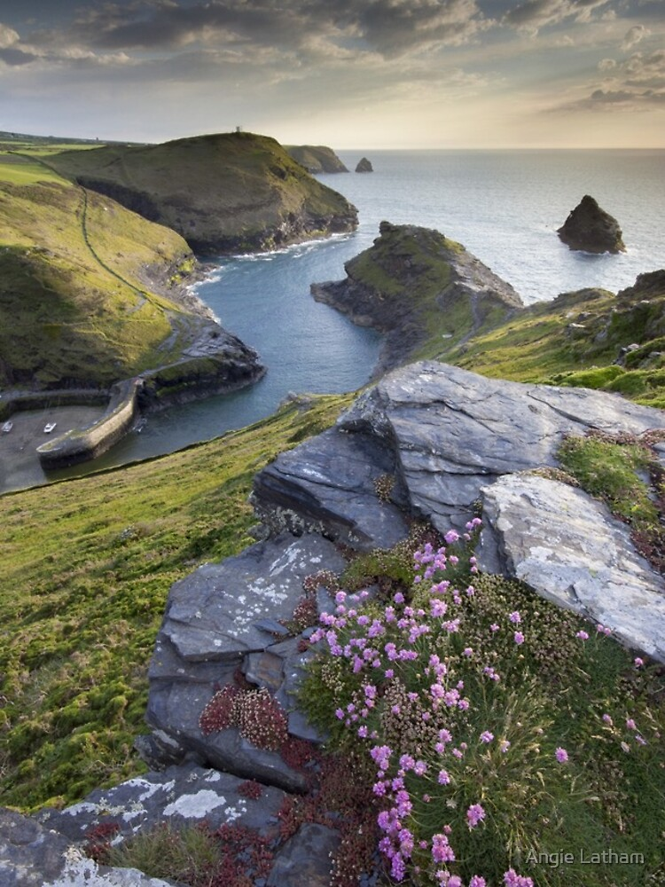 Cornwall : Boscastle Harbour by AngelaBarnett