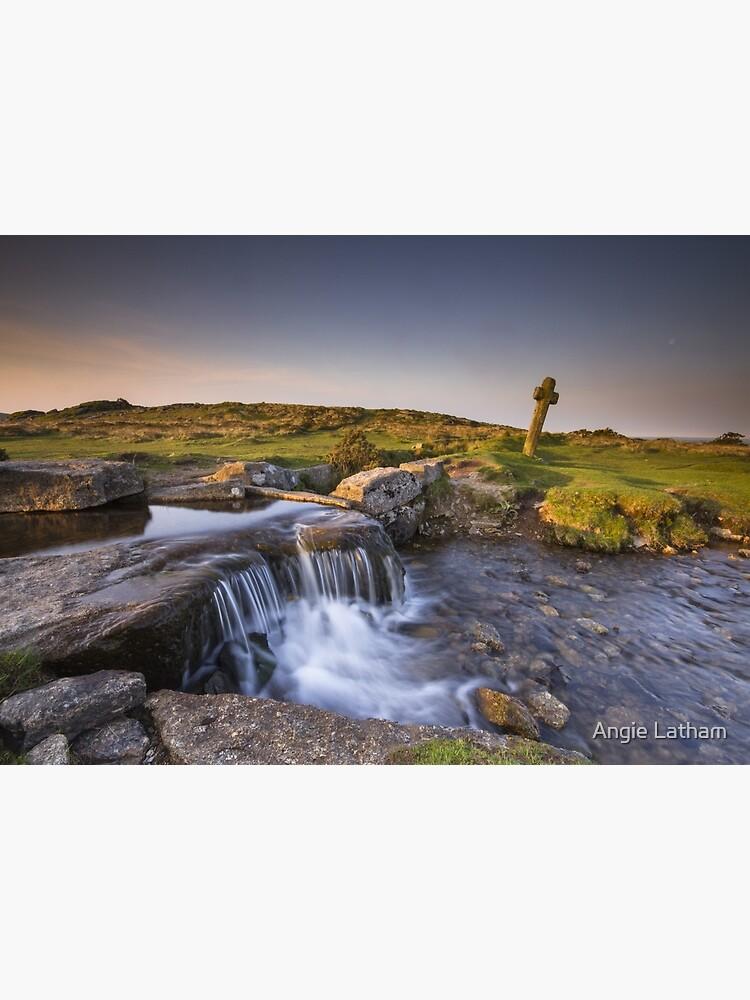 The Windy Post - Dartmoor by AngelaBarnett