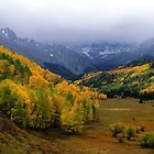 Little Meadow of the Sublime by Eric Glaser