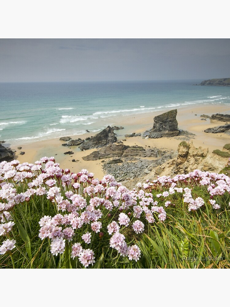 Cornwall - Bedruthan Steps by AngelaBarnett