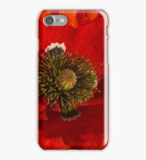red poppy in morning sun iPhone Case/Skin