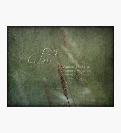 Love quote Photographic Print