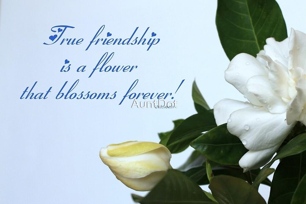 True Friendship Card by AuntDot