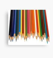 Coloured Pencils Isolated On White Canvas Print
