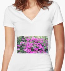 Pinks Women's Fitted V-Neck T-Shirt