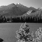 Bear Lake Monochrome by Eric Glaser