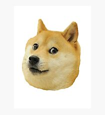 shibe doge face Photographic Print