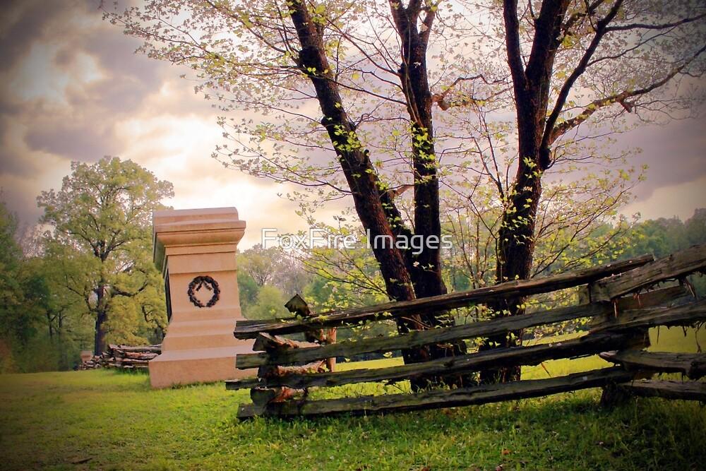 Shiloh Battlefield-048823 by FoxFire Images