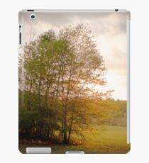Shiloh Battlefield-0557449 iPad Case/Skin