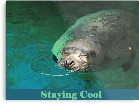 Staying Cool by Thomas Murphy