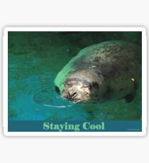 Staying Cool Sticker