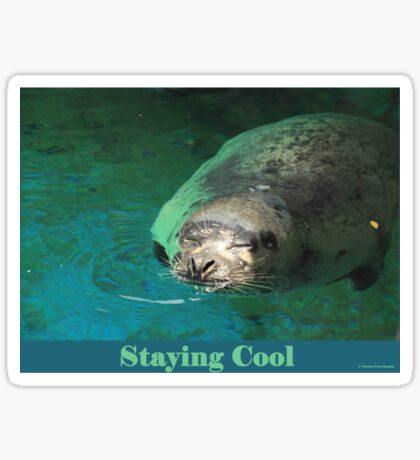 Staying Cool Sticker