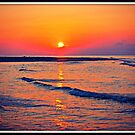 Hunting Island SC by Picture-It