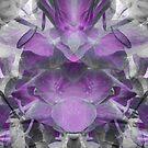 Purple Petals by ElaineLauzon