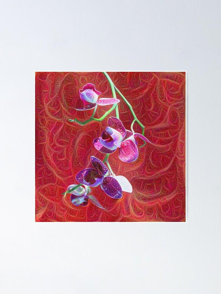 Alternate view of Phalaenopsis B Poster