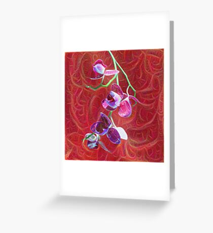 Phalaenopsis B Greeting Card