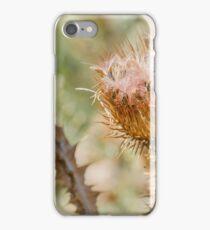 Dry Cirsium Vulgare iPhone Case/Skin