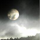 Sedona Arizona Sunrise by Joni  Rae