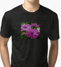 Purple And Pink Tropical Daisy Flower Tri-blend T-Shirt