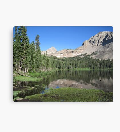 Summer in the Rockies Canvas Print