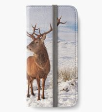 Deer Stag in the snow iPhone Wallet/Case/Skin