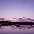 Reflections - Merimbula ... by Erin Davis