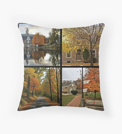 Saucon Valley Fall Throw Pillow