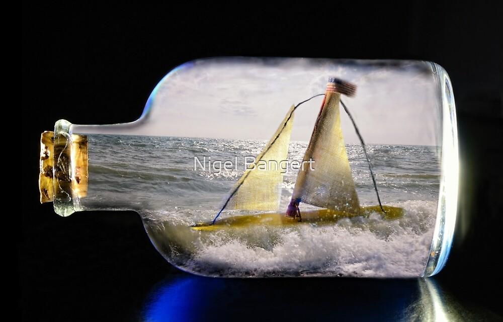 The Pretence of an Ocean by Nigel Bangert