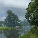 Moody Day On The Canal by Running-Duck