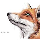 Fox by Meaghan Roberts