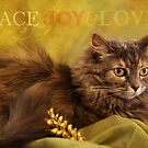 Peace, Joy & Love by Lynn Starner