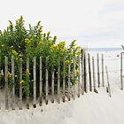 Seaside Gold by RVogler