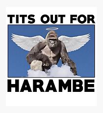 Tits out for HARAMBE   Photographic Print
