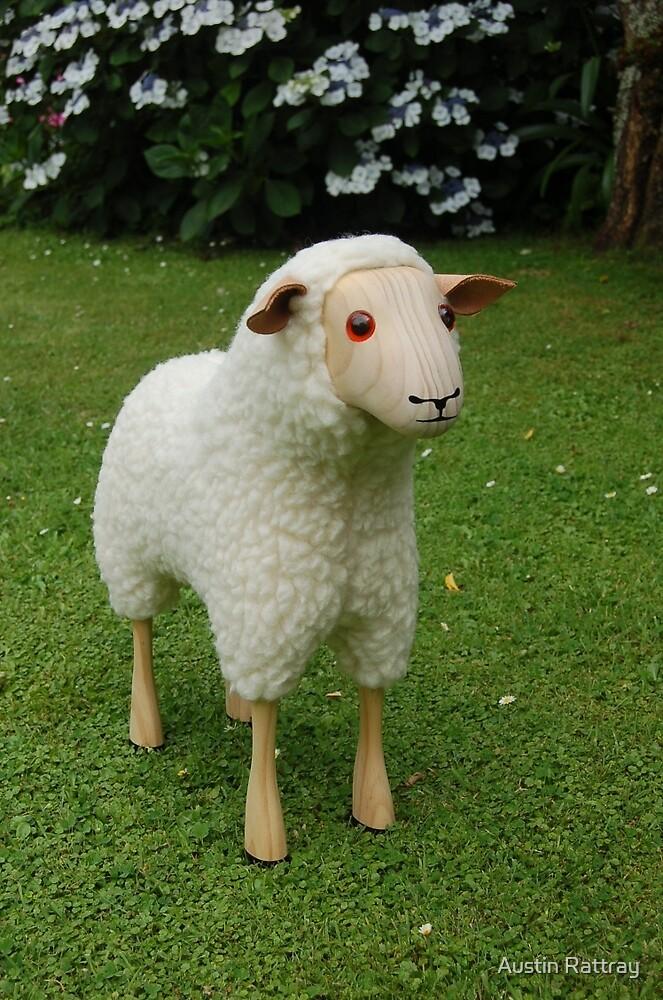 Lamb by Austin Rattray