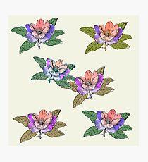 Block Colour Floral Pattern Photographic Print