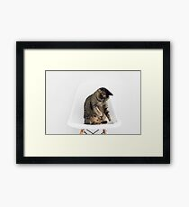 Cute Cat Playing Framed Print