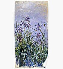 Claude Monet - Iris Mauves  Poster