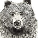 Dave the Grizzly Bear by sarahgeefineart