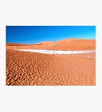 View of Deadvlei in early morning, Namibia Photographic Print